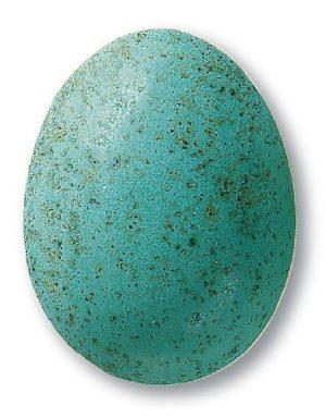 Terra Color 345/ 7845 / łaciaty turkus / 1020-1080°C / proszek/ spożywcze