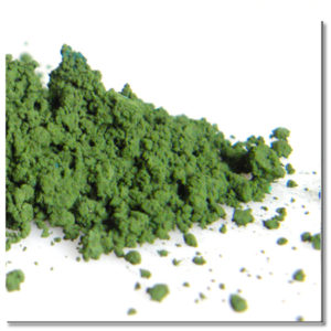 WT 11108 / pigment/ zielony/ 50g