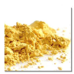 WT 13631 / pigment/ zółty/ 50g